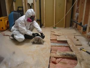 Commercial Restoration Mold Removal